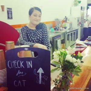 brisbane cat cafe