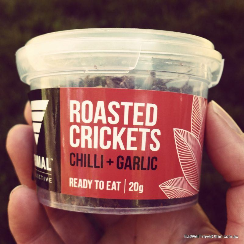 roasted-crickets