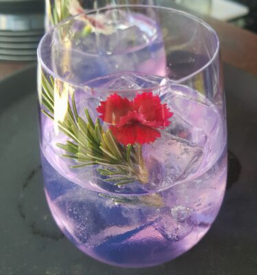 Glass of purple ink gin with sprig of rosemary as garnish